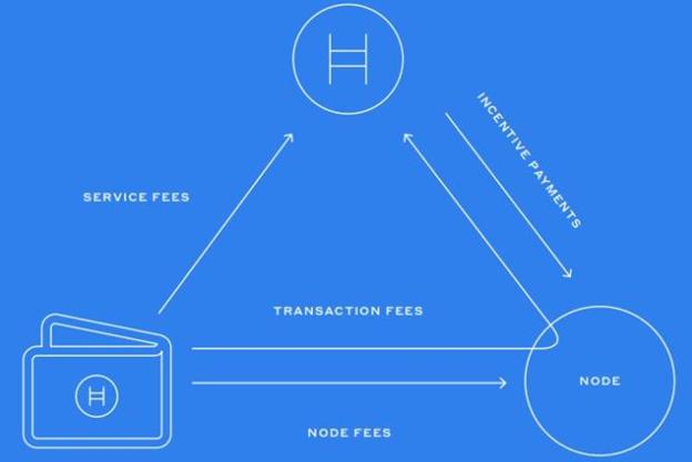 Hedera remuneration and transaction scheme